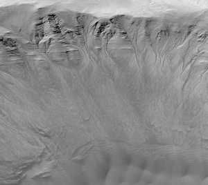 Gullies on the wall of Newton crater on Mars.