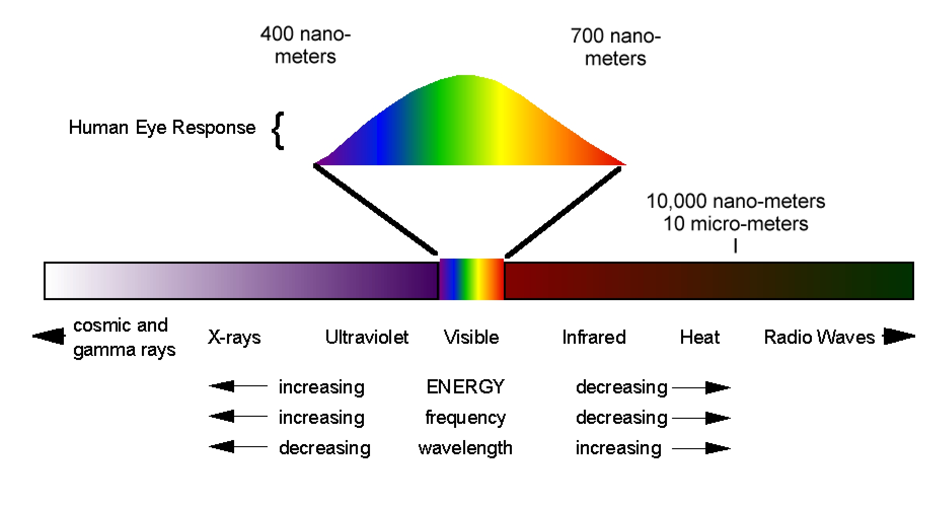 waves light em spectrum Above infrared in frequency comes visible light  electromagnetic radiation with  a wavelength between 380 nm and 760 nm (400–790  the modulation is  similar to that used with radio waves.