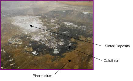 Image of Grand Prismatic Spring showing presence of cyanobacteria