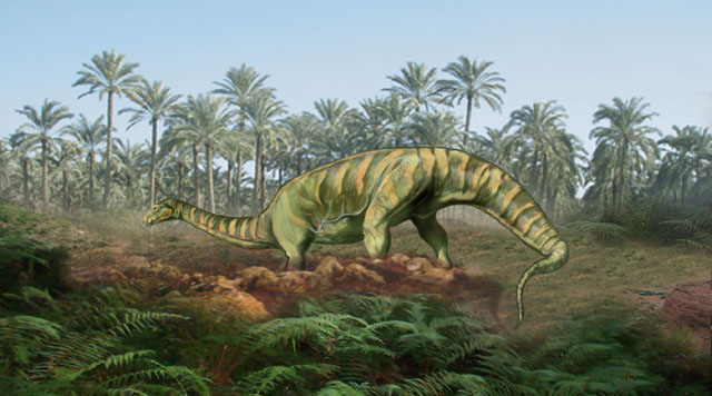 the characteristics of the velociraptor a type of dinosaur Recent fossil evidence shows spinosaurus was the first dinosaur that was able to swim,  velociraptor: facts about the 'speedy thief' time periods precambrian: facts about the beginning of time.