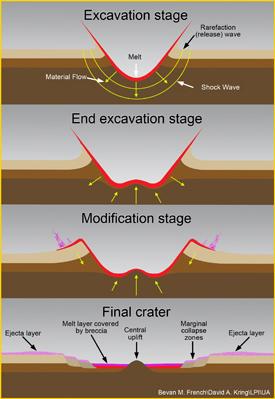 Impact Cratering Mechanics