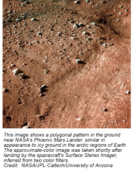 This image shows a polygonal pattern in the ground near NASA's Phoenix Mars Lander, similar in appearance to icy ground in the arctic regions of Earth. The approximate-color image was taken shortly after landing by the spacecraft's Surface Stereo Imager, inferred from two color filters.