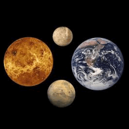 Early Crustal Genesis of Terrestrial Planets Study Project