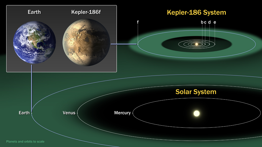 This diagram compares the planets of our inner solar system to Kepler-186, a five-planet star system about 500 light-years from Earth in the constellation Cygnus. The five planets of Kepler-186 orbit an M dwarf, a star that is half the size and mass of the Sun. Image credit: NASA Ames/SETI Institute/JPL-Caltech.