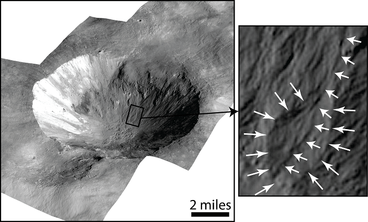 This image shows Cornelia Crater on the large asteroid Vesta. On the right is an inset image showing an example of curved gullies, indicated by the short white arrows, and a fan-shaped deposit, indicated by long white arrows. Image Credit: NASA/JPL-Caltech/UCLA/MPS/DLR/IDA.