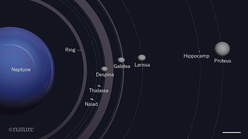 Inner System of Neptune