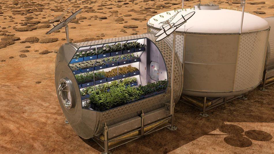Arte conceptual de cómo se verá un futuro módulo de crecimiento de alimentos marcianos. Crédito: NASA.