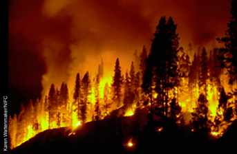 the impact of wildfires on the environment Washington, dc – the environment subcommittee, chaired by rep john shimkus (r-il), today announced a hearing for wednesday, october 4, 2017, at 10 am in room.